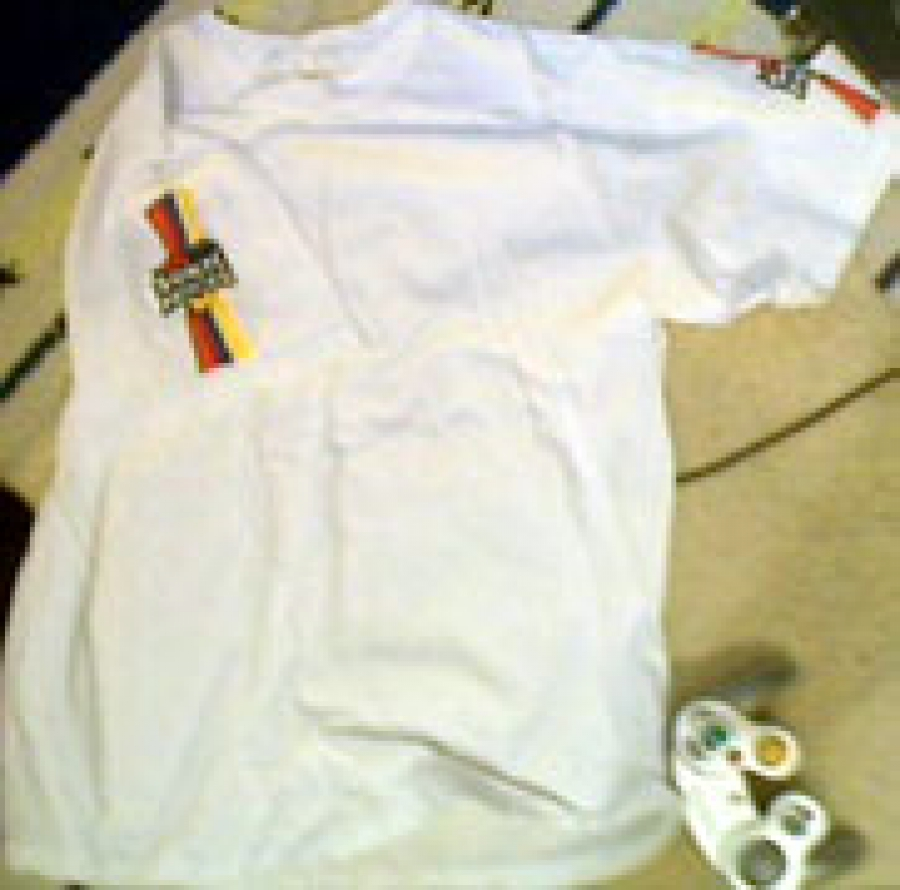 Summer of Sonic prize shirt